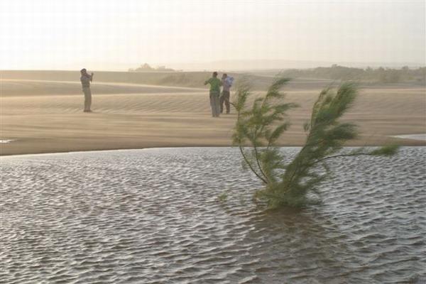 Zulganai oasis.JPG
